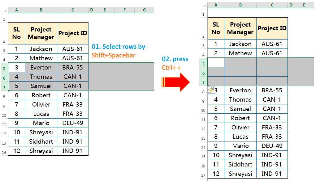 Insert rows by Ctrl++