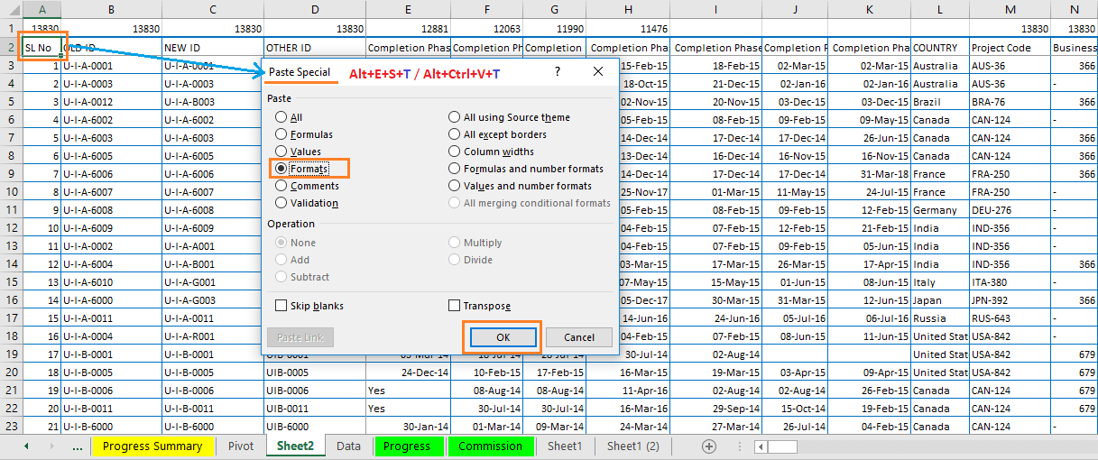 Reduce Excel File size-18 (Use same Heading Formatting from the old database to the new database)