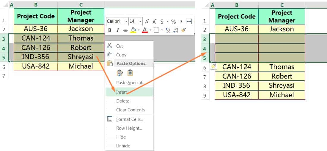 INSERT MULTIPLE ROWS IN EXCEL USING THE MOUSE RIGHT-CLICK_1