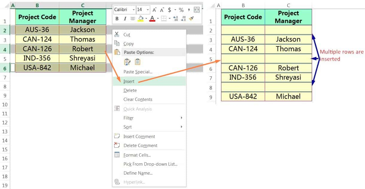 INSERT MULTIPLE ROWS IN EXCEL USING THE MOUSE RIGHT-CLICK_2