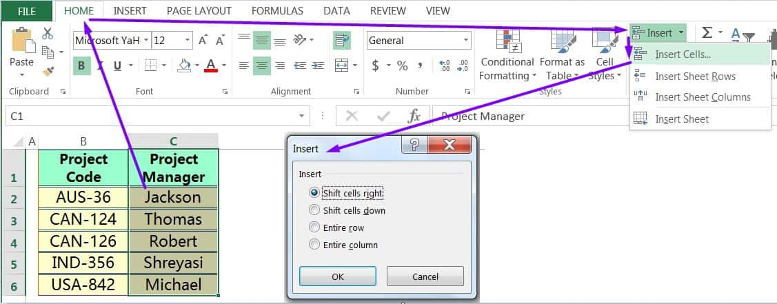 INSERT CELLS IN EXCEL USING THE RIBBON