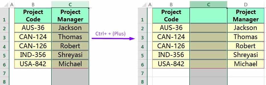 INSERT COLUMN IN EXCEL USING EXCEL SHORTCUT CTRL+ + (PLUS)